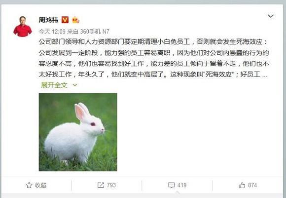 小白兔.jpg